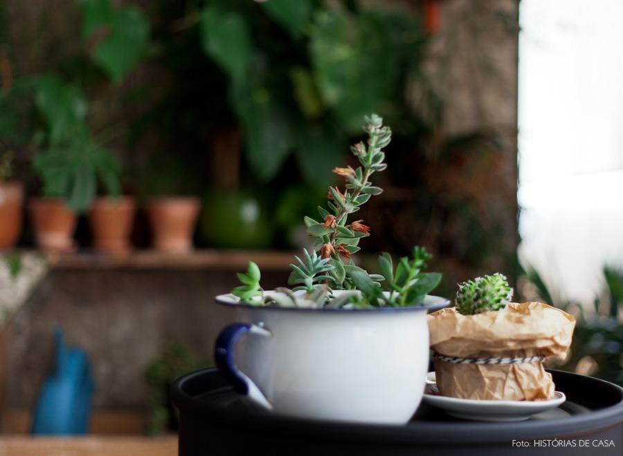 03-decoracao-sala-jardim-plantas-apartamento-suculentas