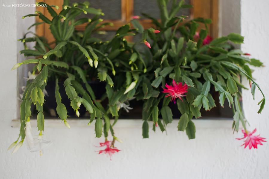 32-decoracao-terraco-plantas-flor-de-maio