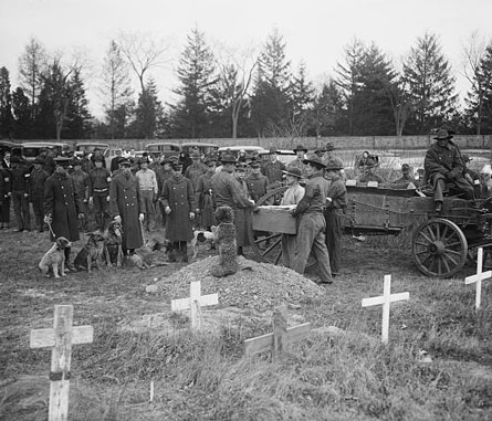 Albert j myer archives historic fort myer historic fort myer the photograph shows one of the sad scenes at the funeral of aloysius smith neff finnigan buried with military honors at fort myer va publicscrutiny Image collections