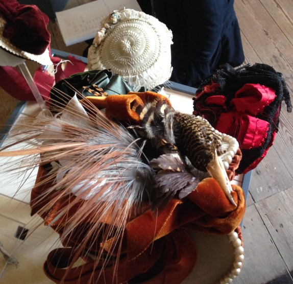 1880s-90s Bird Hat, on loan from the Hereford Museum Resource and Learning Centre