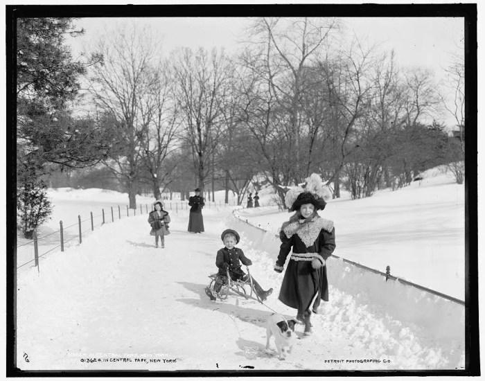 Central Park, NYC, circa 1900.