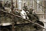 Panzergrenadiers on a Tiger 1 on the Eastern Front.