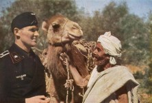 Panzer NCO from 21. Panzer-Division with Arab native and his camel.