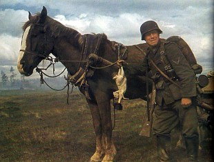 Wehrmacht Reiterzugführer (commander of mounted infantry platoon) on the Eastern Front in the Russian campaign of 1941 - Operation Barbarossa.