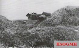 Panzer VI Tiger in wait.
