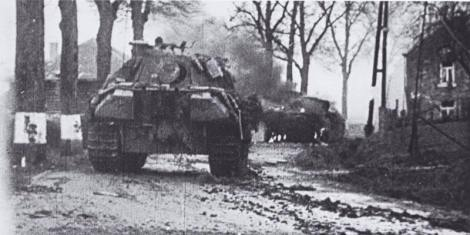 Panther on the move.