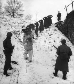 German prisoners, some of them wearing coveralls for camouflage in the snow, are herded by Allied troops.