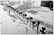 Soldaten graves.