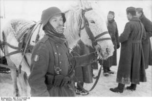 French born soldiers in the Soviet Union, November 1941.