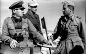Three German officers confer together atop a panzer in North Africa.