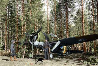 A Finnish Brewster Buffalo 239 fighter BW-352of Squadron Lentolaivue24 at Selänpää airfield. 24th June 1941.