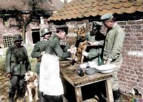 A German dog hospital, treating wounded dispatch dogs coming from the front, 1918.