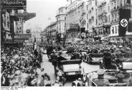 Cheering crowds greet the Nazis in Vienna.