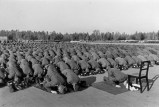 Muslim members of Handschar Division at prayer during their training in Germany.