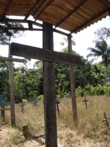 Discovered: Crosses mark the graves deep in the jungle.