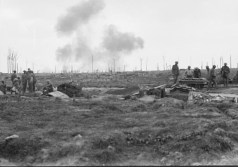 A view of Sanctuary Wood in September 1917.