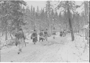 Finnish soldiers east of Kestenga in the arctic forest.