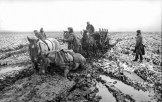Wehrmacht horse carriage sunk in deep mud in Kursk Oblast, March–April 1942.