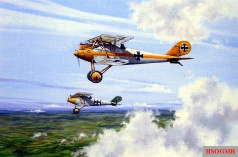 Jasta-Rotte (Rottenführer and Rottenflieger) with Pfalz-Hunter D.IIIa.