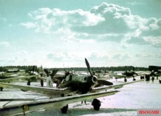 """This photo was taken at Rovaniemi (Finland), one morning in early April 1944. It depicts a Junkers Ju 87 """"Stuka"""" D-5 of the 4.Staffel / II.Gruppe / Schlachtgeschwader 1 (SG 1)."""