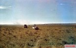 A small German reconnaisance force scanned the horizon looking for the sign of the enemy in North Africa. They are using Sonderkraftfahrzeug 250 (Sd.Kfz.250) and Horch Kfz.15 (Kraftfahrzeug 15) staff car. Photo taken by General Erwin Rommel during his Campaign in North Africa, 1941.