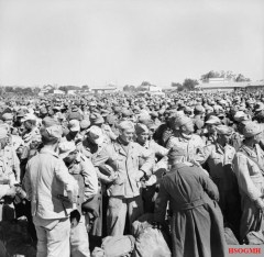 German and Italian prisoners of war, following the fall of Tunis, 12 May 1943.