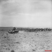 A Universal Carrier escorts a large contingent of Italian prisoners, captured at El Hamma, 28 March 1943.
