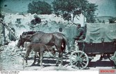 Soldier with horse-drawn carriage in the Crimea in 1942.