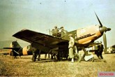 The Romanian Air Force was equipped with fifty Messerschmitt Bf 109Es, about twelve Bf 109Gs, and several IAR 80 and PZL fighters.