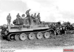 A Tiger during the Tunisia campaign.
