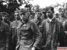Waffen-SS troops taken prisoner in Normandy.