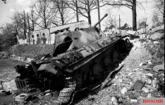 Knocked out Panther in Berlin.