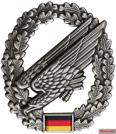 Badge of the Fallschirmjäger.
