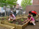 Our raised beds help us grow in different lots with different types of soil.