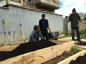 Newly built raised beds for gardening