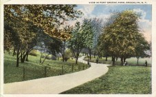 view-in-ft-greene-pk1_