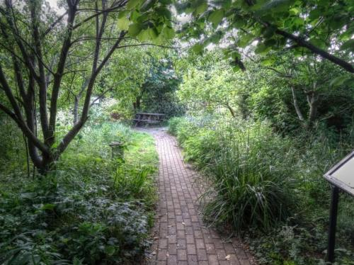 The Hermitage wildlife garden