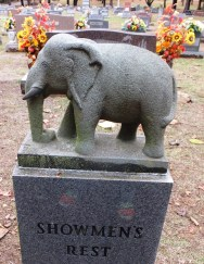 Showmens Rest Elephant