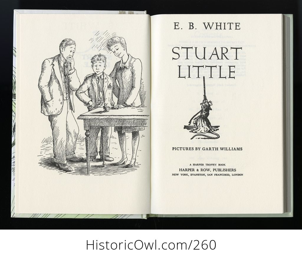 Illustrated Hardcover Book Stuart Little By E B White C