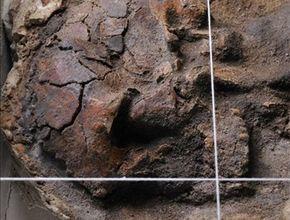 Fragment van het in gips gegoten graf (Afbeelding: RMO)