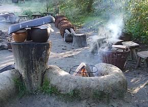 Hout in de ijzertijd en middeleeuwen