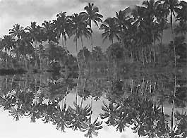 West-Java (Afb: Tropenmuseum)