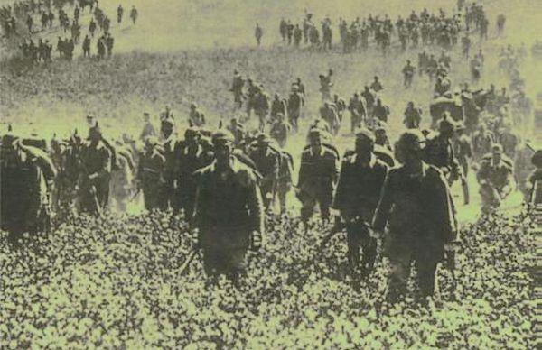 Het dramatische jaar 1914 (detail cover)