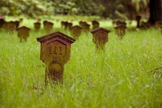 Kindergraven van Belgische vluchtelingen, Nunspeet (cc)