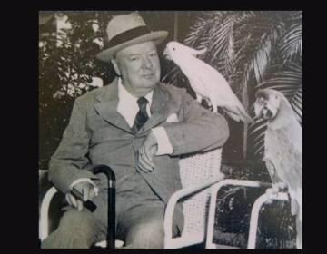 Winston Churchill in 1946 - cc