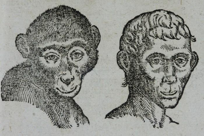 Della Porta (1535-1615) is de grondlegger van de fysionomie. Hij maakte daarbij vergelijkingen met dieren en hun karaktereigenschappen. (G.B. della Porta, 1601; coll. Teylers Museum)