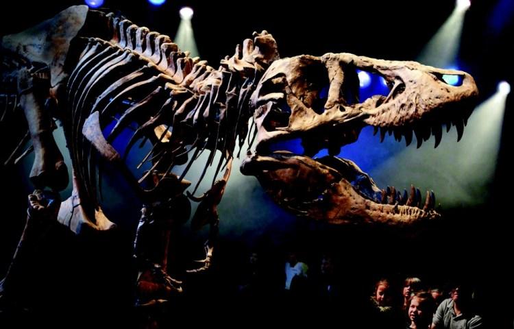Tyrannosaurus rex (Naturalis)
