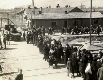 Joden op weg naar de gaskamers (Auschwitz Album, mei 1944)