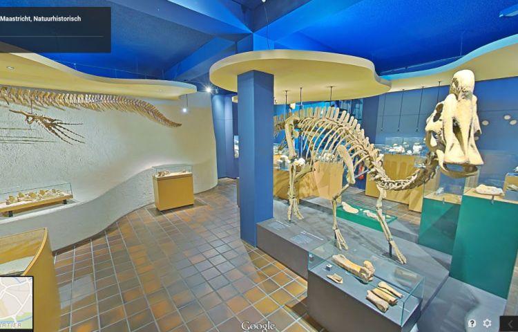 Natuurhistorisch Museum in Maastricht via Google Street View