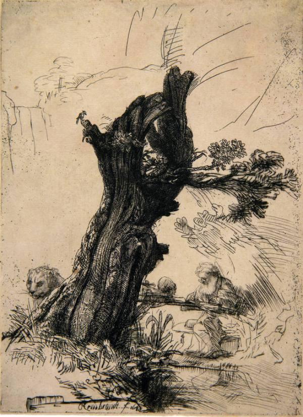 Hieronymus bij een knotwilg - Rembrandt van Rijn